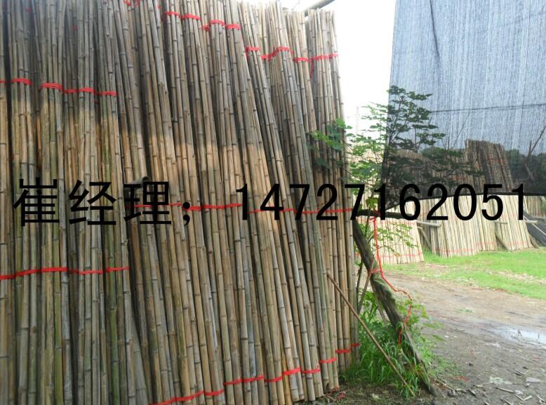 大量批发楠竹稍毛竹尾支撑竿渔业插网园林支撑专用质量好价格低