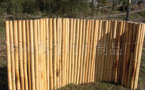 大量供應優質竹竿 白竹竿 白竹 出口竹 裝飾園藝竹竿 毛竹竿等