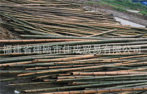廠家直銷 大量貨源 竹本色平壓板 竹碳化平壓板
