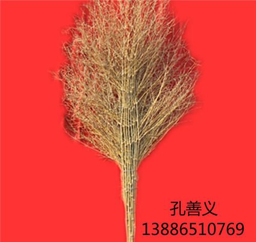 竹扫把 优质二黄凤尾帚 大量供应 厂家直销 量大从优